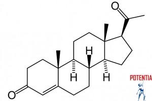 Zanjite_moc_hormonov_-_estrogen